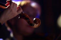 El violinista Fotos de archivo libres de regalías