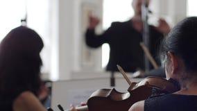 El violinista de sexo femenino juega en el violín delante de un soporte musical en el conductor del fondo almacen de video