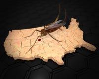 El virus de Zika infecta los Estados Unidos ilustración del vector