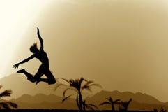 El volar en un tropical Imagen de archivo libre de regalías