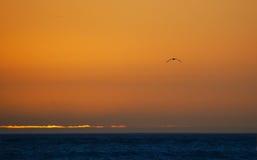 El volar hacia puesta del sol Foto de archivo