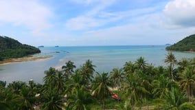 El volar sobre arboleda de la palmera en la isla tropical de Samui en Tailandia Silueta del hombre de negocios Cowering almacen de metraje de vídeo