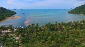 El volar sobre arboleda de la palmera en la isla tropical de Samui en Tailandia Silueta del hombre de negocios Cowering almacen de video