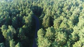 El volar sobre el camino y el bosque metrajes