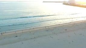 El volar sobre gaviotas en la costa atlántica en Oporto aéreo metrajes