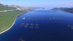 El volar sobre granja de pescados en el mar dálmata almacen de metraje de vídeo