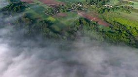 El volar sobre landcape con la niebla almacen de video
