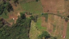El volar sobre tierras de labrantío en Mauritius Island almacen de metraje de vídeo