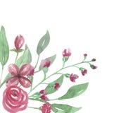 El Watercolour Rose Frame Wedding Flower Hand roja de la esquina pintó Fotografía de archivo libre de regalías