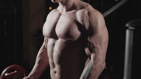 El Weightlifter levanta el barbell al bíceps de entrenamiento Culturista con el barbell en gimnasio almacen de video