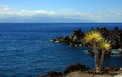 El wiev en el La Gomera Imagen de archivo