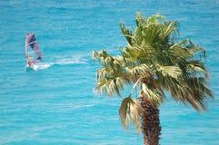 El Windsurfing Fotos de archivo libres de regalías