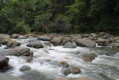 El Yunque stock image