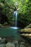 El Yunque Falls And Pool Stock Images