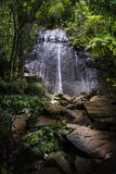 El Yunque La Coca waterfall Royalty Free Stock Photography