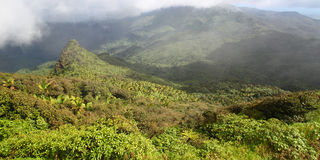 El Yunque Rainforest - Puerto Rico. Misty clouds sweep over the rainforest in the mountains of El Yunque National Forest - Puerto Rico Royalty Free Stock Image