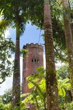 El Yunque Rainforest in Puerto Rico Yokahu Observation tower royalty free stock photography