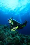 El zambullidor de equipo de submarinismo explora el filón coralino Fotos de archivo libres de regalías