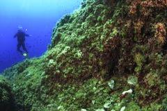 El zambullirse en el mar Mediterráneo - Majorca Fotos de archivo libres de regalías
