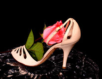 El zapato de la mujer y subió Foto de archivo libre de regalías