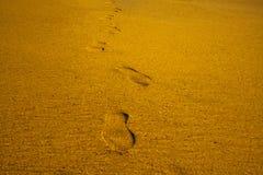 El zapato de los pasos imprime marcas el verano de las vacaciones del mar de la playa de la arena imagen de archivo libre de regalías