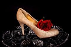 El zapato femenino y subió Fotos de archivo libres de regalías