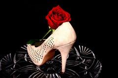 El zapato femenino y subió Imagen de archivo libre de regalías