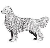 El zentangle del perro del golden retriever estilizó, vector, el ejemplo, f ilustración del vector