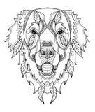 El zentangle del perro del golden retriever, garabato estilizó la cabeza, mano dibujada ilustración del vector