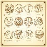 El zodiaco de los gatos del bosquejo firma adentro estilo del vintage Imagen de archivo libre de regalías