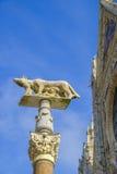 Ela-lobo com Romulus e Remus na frente do domo de Siena Fotografia de Stock Royalty Free