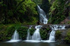 elabana понижается национальный парк lamington Стоковое Изображение RF