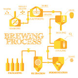 Elaboración de la cerveza infographic imagen de archivo