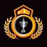 Elaborage trophy in gold royal crest. Gold royal display with a silver elaborate trophy Royalty Free Stock Photography