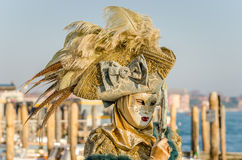Elaborate Carnival Costume and Mask Stock Photo