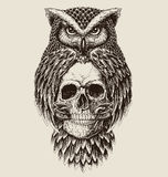 Elaborate drawing of Owl holding skull Royalty Free Stock Images
