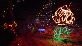 Elaborate Rose Christmas Lights. Elaborate neighborhood Christmas lights in the shape of a romantic rose. This photo displays all of the key aspects of Royalty Free Stock Image