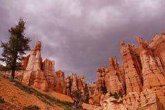 Elaborately eroded pinnacles and hoodoos Royalty Free Stock Photo