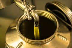 Elaborazione dell'olio d'oliva in un'azienda agricola moderna Immagine Stock