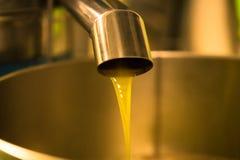 Elaborazione dell'olio d'oliva in un'azienda agricola moderna Fotografia Stock Libera da Diritti
