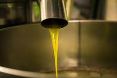 Elaborazione dell'olio d'oliva in un'azienda agricola moderna Fotografie Stock