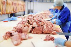 Elaborazione della carne in una pianta di imballaggio della carne Industria alimentare immagine stock