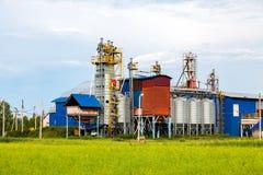 Elaborazione della fabbrica dei grani e dei cereali Immagini Stock Libere da Diritti