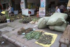 Elaborazione della medicina di erbe cinese Fotografie Stock