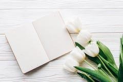 Elabori il taccuino, la penna ed i tulipani alla moda sulle sedere rustiche di legno bianche Immagine Stock