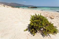 Elafonisi beach (Crete, Greece) Stock Photos