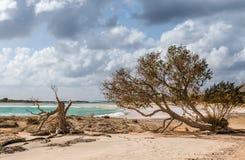 Elafonisi plaża w Crete na pogodnym mimo to chmurnym dniu zdjęcia stock