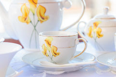 Elagant Tea Cup Stock Photos