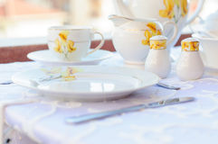 Elagant Tea Set Stock Photography