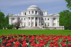 elagin宫殿彼得斯堡圣徒 库存图片